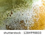 lemon with moldy peel. | Shutterstock . vector #1284998833