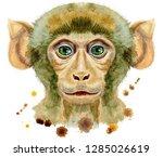 monkey horoscope character...   Shutterstock . vector #1285026619