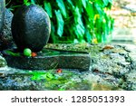 lord shiva ling in the woodland ... | Shutterstock . vector #1285051393