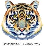 tiger horoscope character...   Shutterstock . vector #1285077949