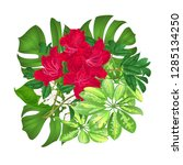 bouquet with tropical flowers... | Shutterstock .eps vector #1285134250