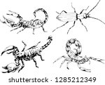 vector drawings sketches... | Shutterstock .eps vector #1285212349