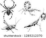 vector drawings sketches... | Shutterstock .eps vector #1285212370
