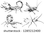 vector drawings sketches... | Shutterstock .eps vector #1285212400