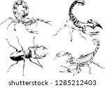 vector drawings sketches... | Shutterstock .eps vector #1285212403