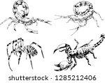 vector drawings sketches... | Shutterstock .eps vector #1285212406