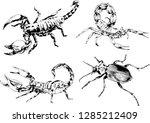 vector drawings sketches... | Shutterstock .eps vector #1285212409