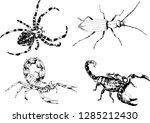 vector drawings sketches... | Shutterstock .eps vector #1285212430