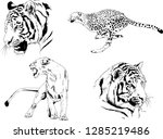 vector drawings sketches... | Shutterstock .eps vector #1285219486