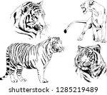 vector drawings sketches... | Shutterstock .eps vector #1285219489