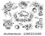 rose flower.hand drawn flower... | Shutterstock .eps vector #1285221430