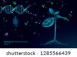 plant sprout biotechnology... | Shutterstock .eps vector #1285566439