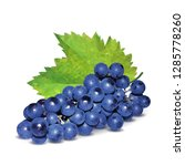 grapes low poly. fresh ... | Shutterstock . vector #1285778260