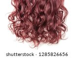 single piece clip in claret red ...   Shutterstock . vector #1285826656
