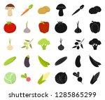 different kinds of vegetables... | Shutterstock .eps vector #1285865299