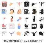 woman and pregnancy cartoon... | Shutterstock .eps vector #1285868449