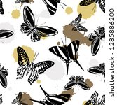pretty seamless butterfly kite...   Shutterstock .eps vector #1285886200