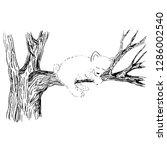 bear sleeping vector sketch ... | Shutterstock .eps vector #1286002540