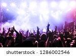 concert crowd at rock concert | Shutterstock . vector #1286002546