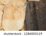 excellent natural background...   Shutterstock . vector #1286003119