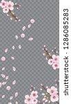 spring frame vertical of sakura ...   Shutterstock .eps vector #1286085283