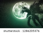 supermoon with many stars.... | Shutterstock . vector #1286205376