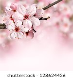 Stock photo spring border background with pink blossom 128624426