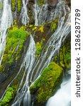 Panther Creek Falls  Gifford...