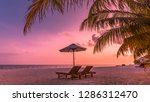 dream scene. beautiful palm... | Shutterstock . vector #1286312470