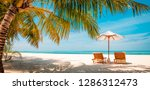 dream scene. beautiful palm... | Shutterstock . vector #1286312473