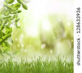 spring background | Shutterstock . vector #128633936