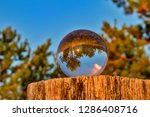 A Glass Ball Of Nature