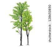 tree vector   hand drawn | Shutterstock .eps vector #128653850