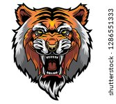 angry tiger  wild big cat head. ... | Shutterstock .eps vector #1286551333