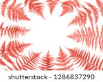 fern leaves in trendy color... | Shutterstock . vector #1286837290