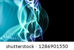 structure of waving lines with... | Shutterstock . vector #1286901550