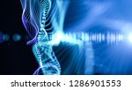 structure of waving lines with... | Shutterstock . vector #1286901553