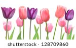 beautiful flowers of purple and ... | Shutterstock . vector #128709860
