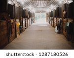 Stock photo inside the bright and clean stables of an equestrian farm with horses poking their heads out of the 1287180526