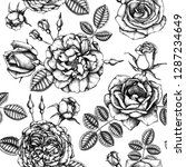 hand drawn roses. floral... | Shutterstock .eps vector #1287234649