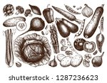 vector collection of hand drawn ... | Shutterstock .eps vector #1287236623