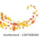 oak  maple  wild ash rowan... | Shutterstock .eps vector #1287408460