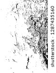 abstract background. monochrome ... | Shutterstock . vector #1287435160