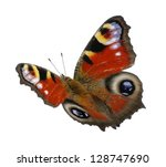 butterfly isolated on the white | Shutterstock . vector #128747690