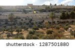 Old wall and olive trees grove at Kidron Valley on the eastern side of the Old City of Jerusalem, separating the Temple Mount from the Mount of Olives. Biblical site central to Judaism, Christianity