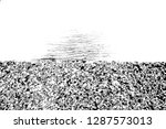 abstract background. monochrome ... | Shutterstock . vector #1287573013