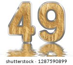 numeral 49  forty nine ... | Shutterstock . vector #1287590899
