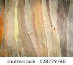 Eucalyptus Deglupta Tree Bark...
