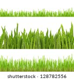fresh green grass isolated on... | Shutterstock . vector #128782556