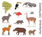 Animal In South America Vector...